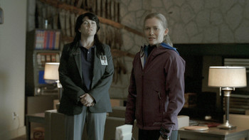 Episodio 11 (TTemporada 1) de The Killing