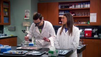Episodio 16 (TTemporada 5) de The Big Bang Theory